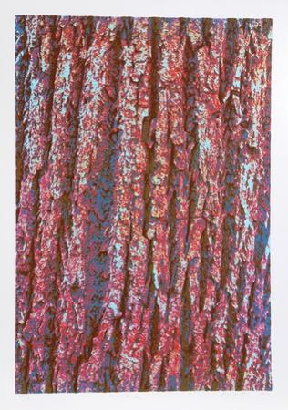 Tree Bark by Max Epstein