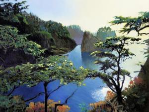 Cape Flattery by Max Hayslette