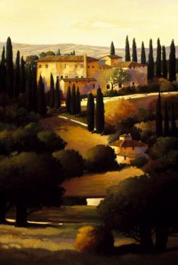 Green Hills of Tuscany I by Max Hayslette