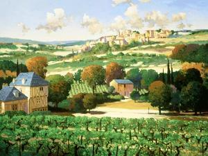 Vineyards of Provence by Max Hayslette