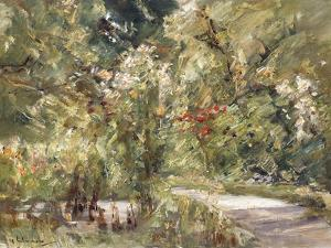 Garden by the Wansee; Wanseegarten, C.1928-39 by Max Liebermann