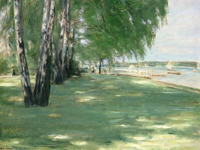 The Garden of the Artist in Wannsee, 1918 by Max Liebermann