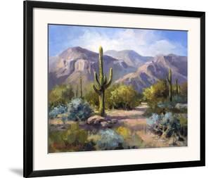 Catalina Mountain Foothills by Maxine Johnston