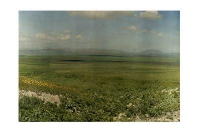 A View across the Plain of Jezreel by Maynard Owen Williams