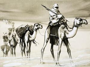 Camels Crossing the Desert by Mcbride