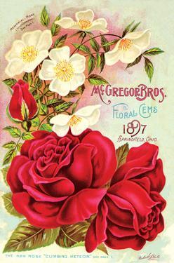 Mcgregor Bros. Floral Gems