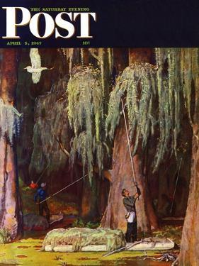 """""""Spanish Moss pickers,"""" Saturday Evening Post Cover, April 5, 1947 by Mead Schaeffer"""