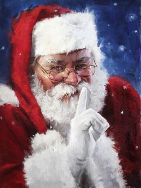 santa2 by Meadowpaint