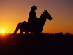 A Cowboy and His Horse Ride off in to the Sunset by Medford Taylor