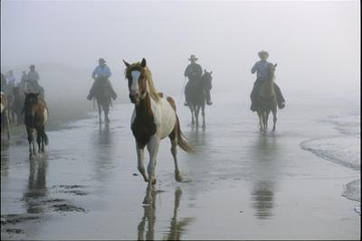 Chincoteague cowboys herd a wild pony through the surf. by Medford Taylor