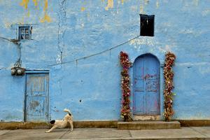 The Resident Dog Stretches in Front of a Small Church in Xoconusco, Mexico by Medford Taylor
