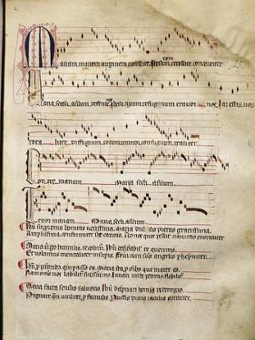 Medieval Music from Aquitaine to Be Danced in a Church