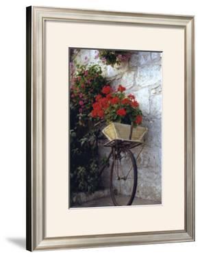 Flower Box Bike by Meg Mccomb