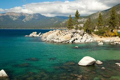 Lake Tahoe Landscape by Megan Ahrens