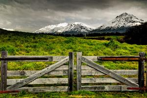 Snow-Capped New Zealand Mountains by Megan Ahrens
