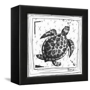 Coastal Sea Turtle Ocean Beach Sketch by Megan Aroon Duncanson