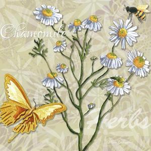 Herbs 3 Chamomile by Megan Aroon Duncanson