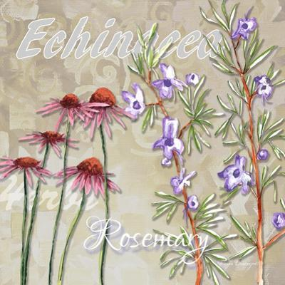 Sophisticated Elegant Herbs Spices Rosemary Floral by Megan Aroon Duncanson