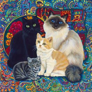 Carpet Cats 1 by Megan Dickinson