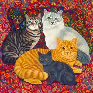 Carpet Cats II by Megan Dickinson