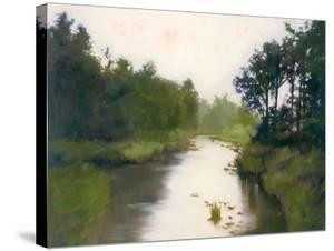 Foothills Stream by Megan Lightell