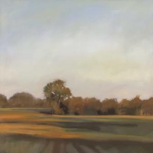 Harvest Fields by Megan Lightell