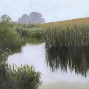Morning Creekside by Megan Lightell