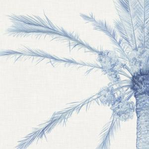 Chambray Palms I by Megan Meagher