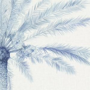 Chambray Palms II by Megan Meagher