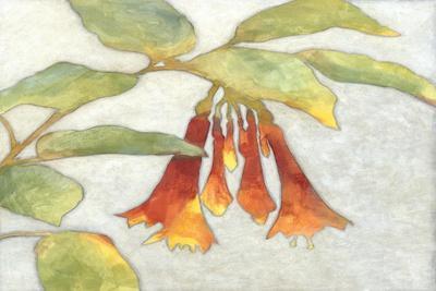 Fuchsia Blooms I