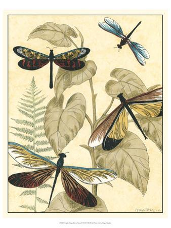 Graphic Dragonflies in Nature II by Megan Meagher
