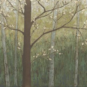 Hudson River Forest I by Megan Meagher