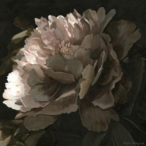 Moonlit Peony II by Megan Meagher