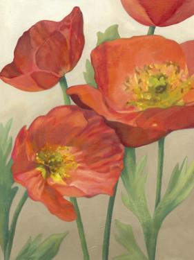 Poppy Love I by Megan Meagher