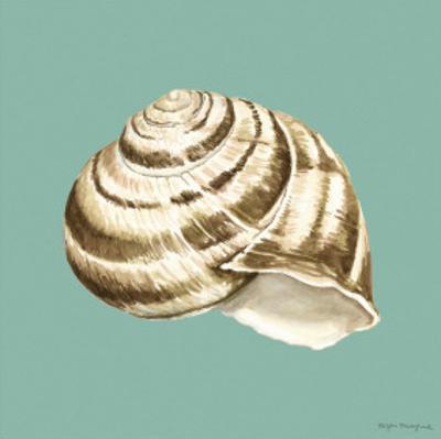 Shell on Aqua I by Megan Meagher