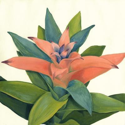 Tropical Bloom IV