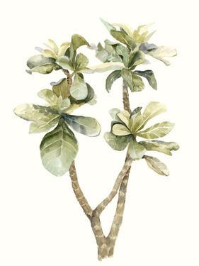 Tropical Watercolor Leaves III by Megan Meagher