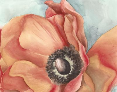 Watercolor Poppy I by Megan Meagher