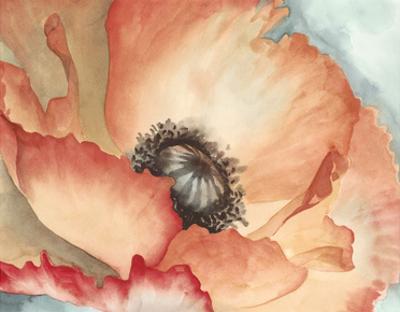 Watercolor Poppy II by Megan Meagher