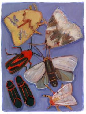 Minnesota Moths and Box Elders by Megan Moore