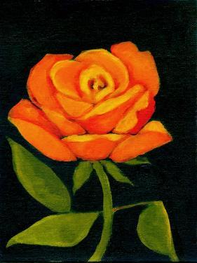 Orange Rose by Megan Moore