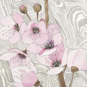 Pretty in Pink Blossoms 2 by Megan Swartz