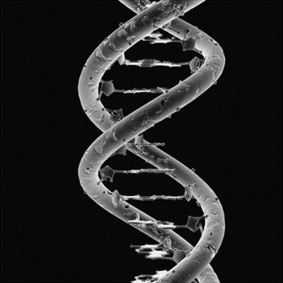 DNA Molecule by Mehau Kulyk
