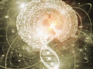 DNA by Mehau Kulyk