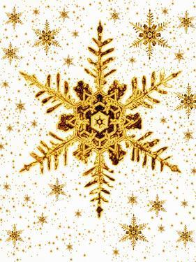 Snowflakes by Mehau Kulyk