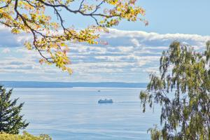 View of Ferry on Puget Sound by Mel Curtis