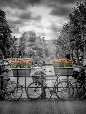Typical Amsterdam II by Melanie Viola