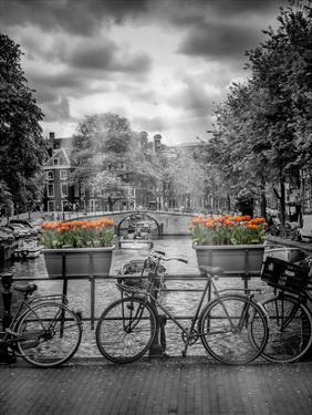 Typical Amsterdam II by Melanie Viola