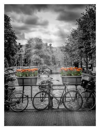 Typical Amsterdam II