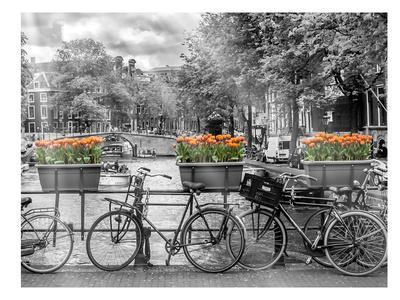 Typical Amsterdam - Panoramic View